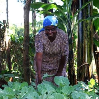 Microkrediet via Wakibi