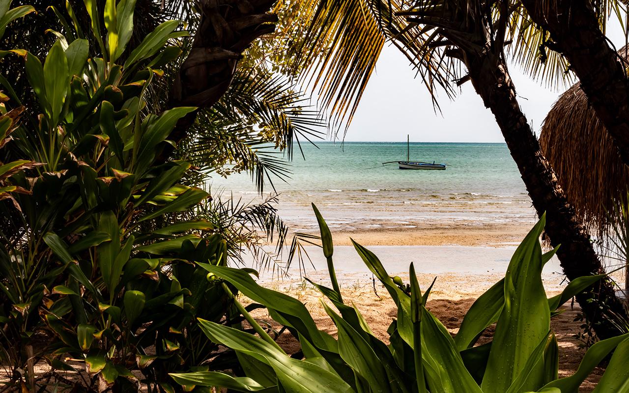 afrika mozambique