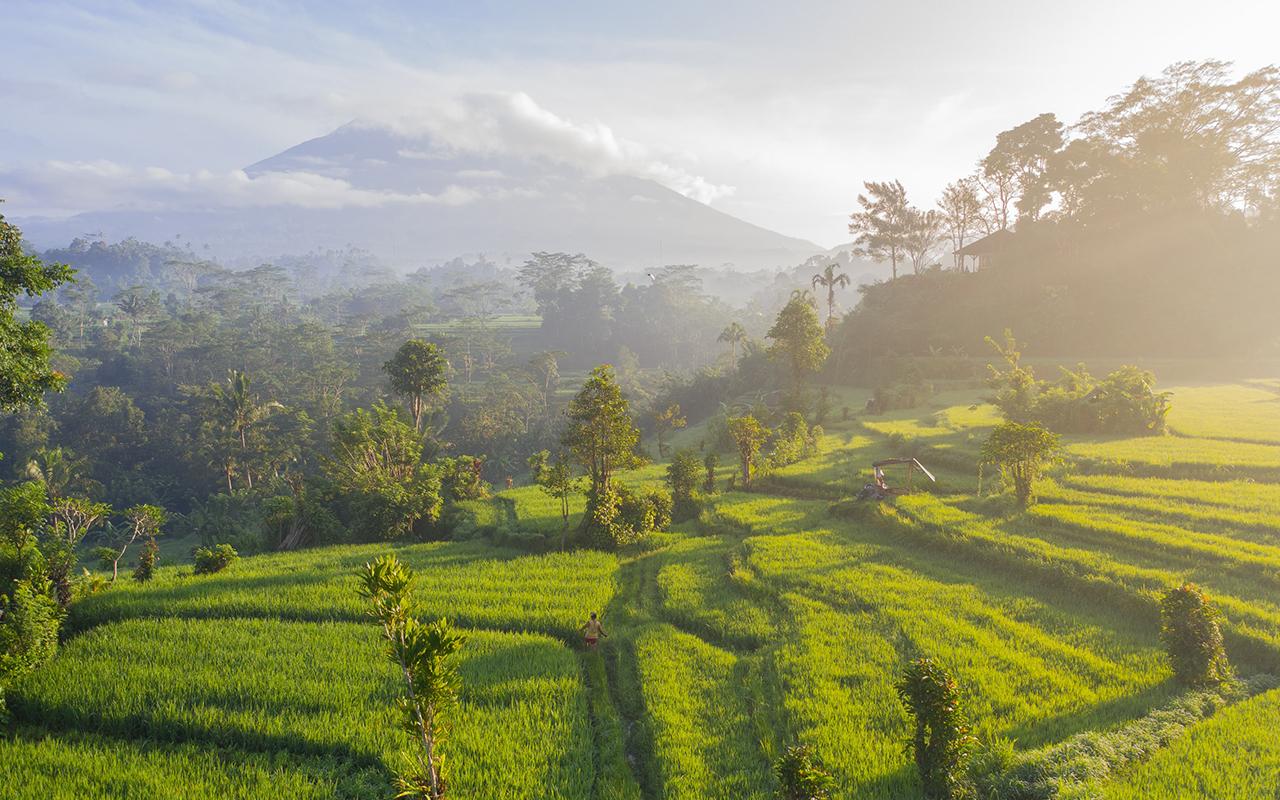 azie indonesie