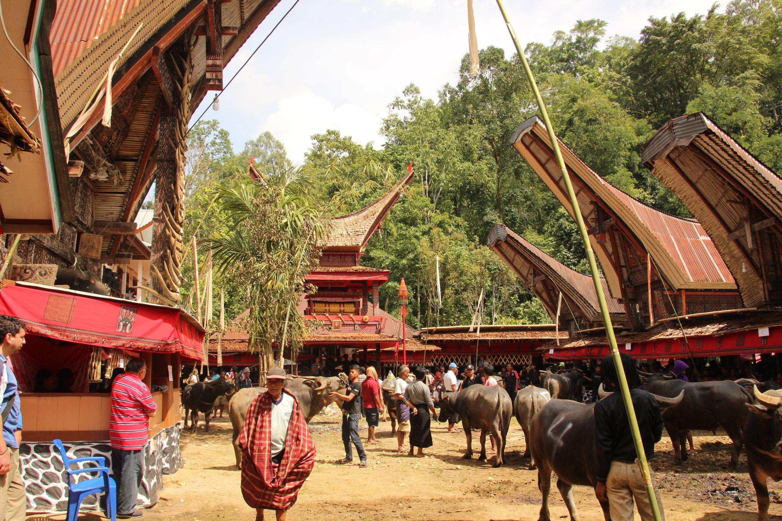 Indonesie Sulawesi Tana Toraja