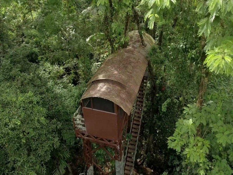 Boca Tapada boomhut bovenaf