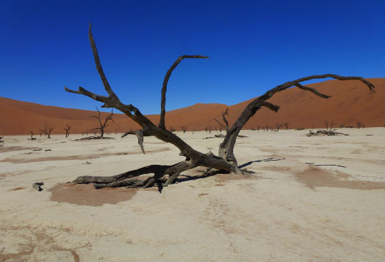 Namibië zoutvlaktes Sossusvlei
