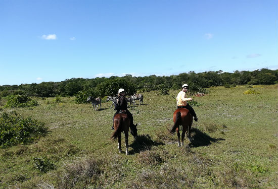 Swaziland paardrijden