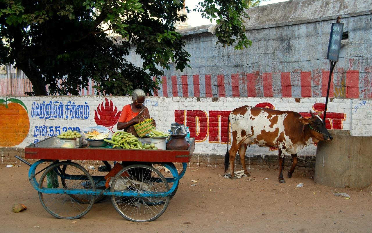 Lokale straat - India
