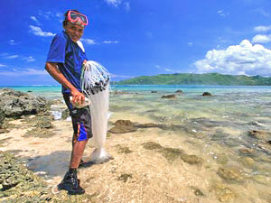 lombok-visser-kust1