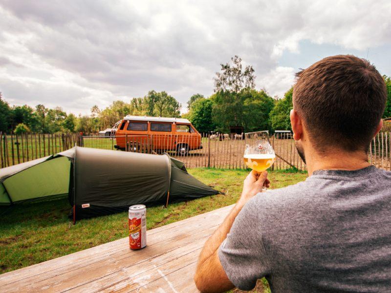 Roadtrip-camping-Alpaca