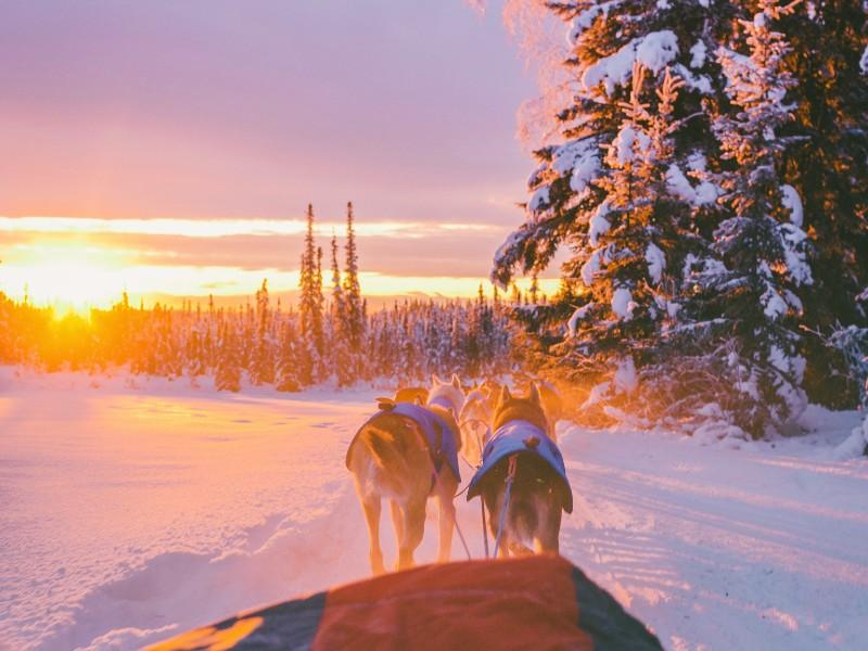 Webinar Lapland