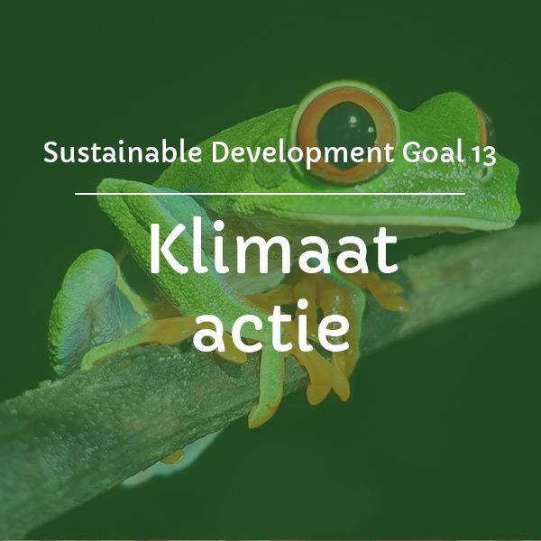 sdg-13-klimaat-actie-riksja-travel