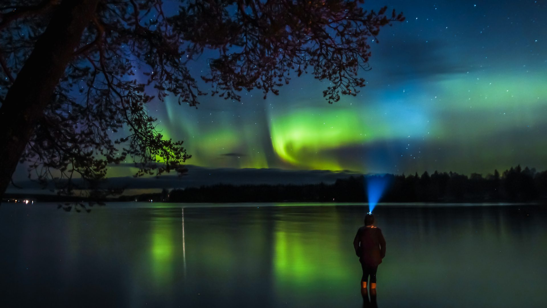 Vakantie Lapland - Noorderlicht