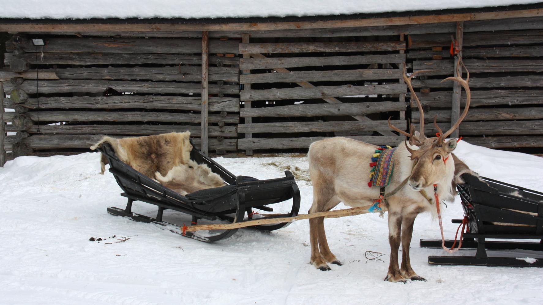Vervoer in Lapland