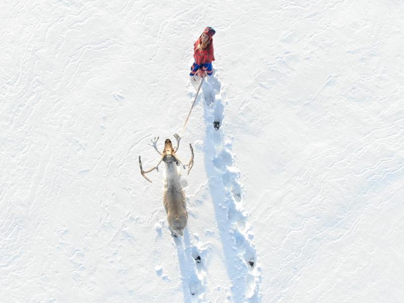 Winterbestemming Lapland