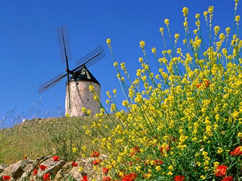 Klimaat en beste reistijd Spanje olijfroute