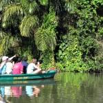 Rondreizen Costa Rica - wildlife spotten
