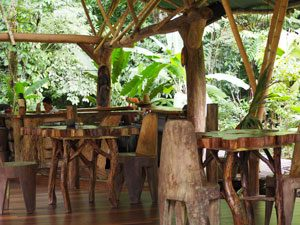 Costa Rica reis Corcovado ecolodge