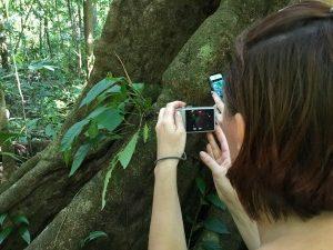 Costa Rica reis kerst