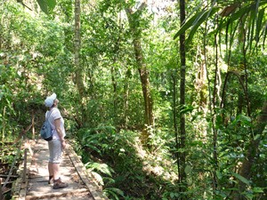 manuel antonio wandelen costarica