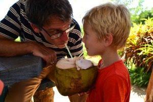 Cuba kokosnoot