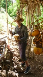 cuba-kokosnoot