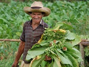 Cuba reizen - Vinales