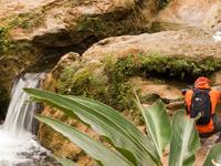 Las Terrazas natuur
