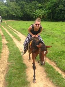 paard vinales paardrijden cuba