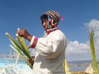 Titicaca-top-5