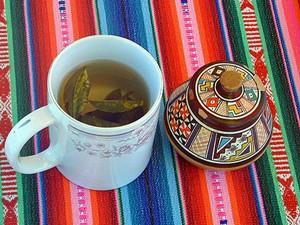 peru coca thee