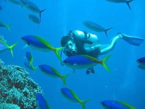 Australie Great Barrier Reef