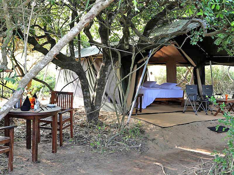 Kamperen in Sri Lanka safari