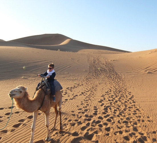 jongetje op kameel-vervoersmiddelen