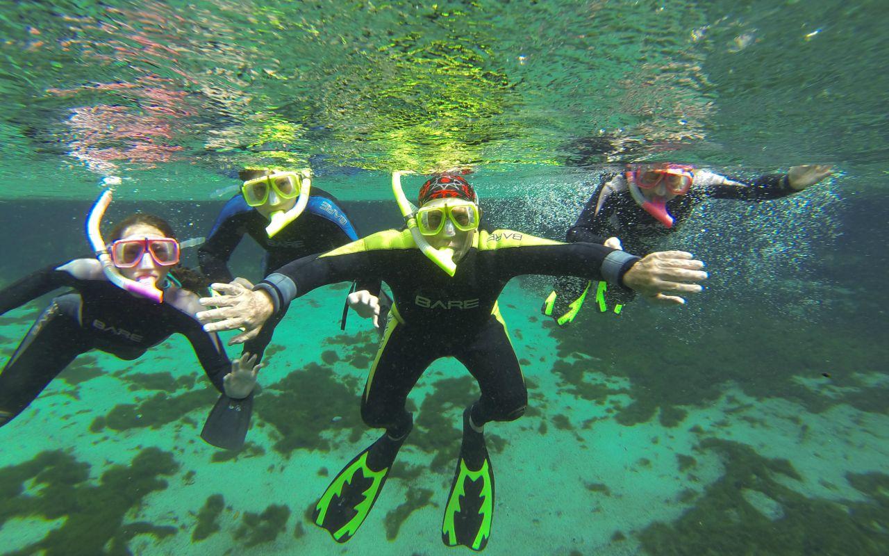 Florida, Amerika - snorkelen