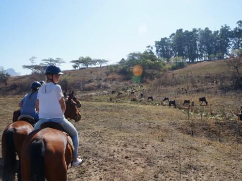 zuid-afrika-met-kinderen-paardrijden