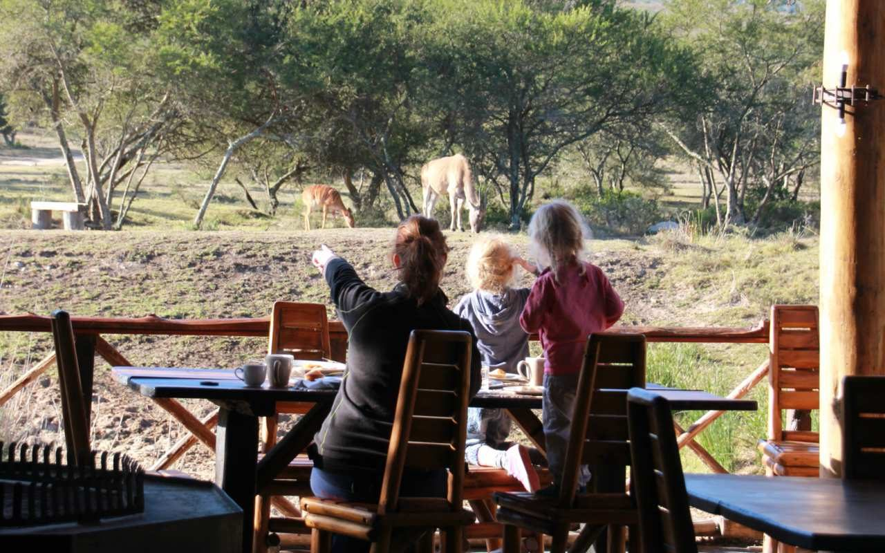zuid-afrika-met-kinderen-wild-spotten