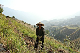 longji-rijstterrassen